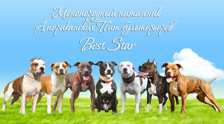 Best Star